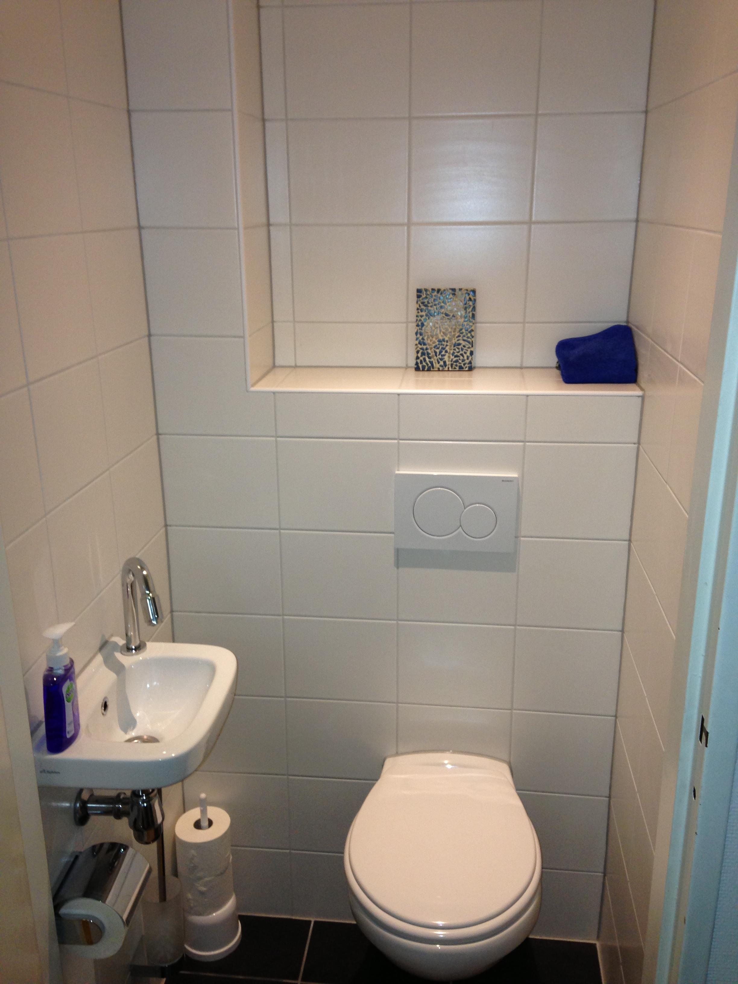 toilet in badkamer maken fuck for